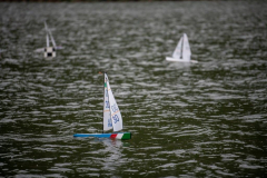Regata-del-8-Settembre-2019-settembre-08-2019-47-FILEminimizer