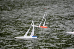 Regata-del-8-Settembre-2019-settembre-08-2019-65-FILEminimizer